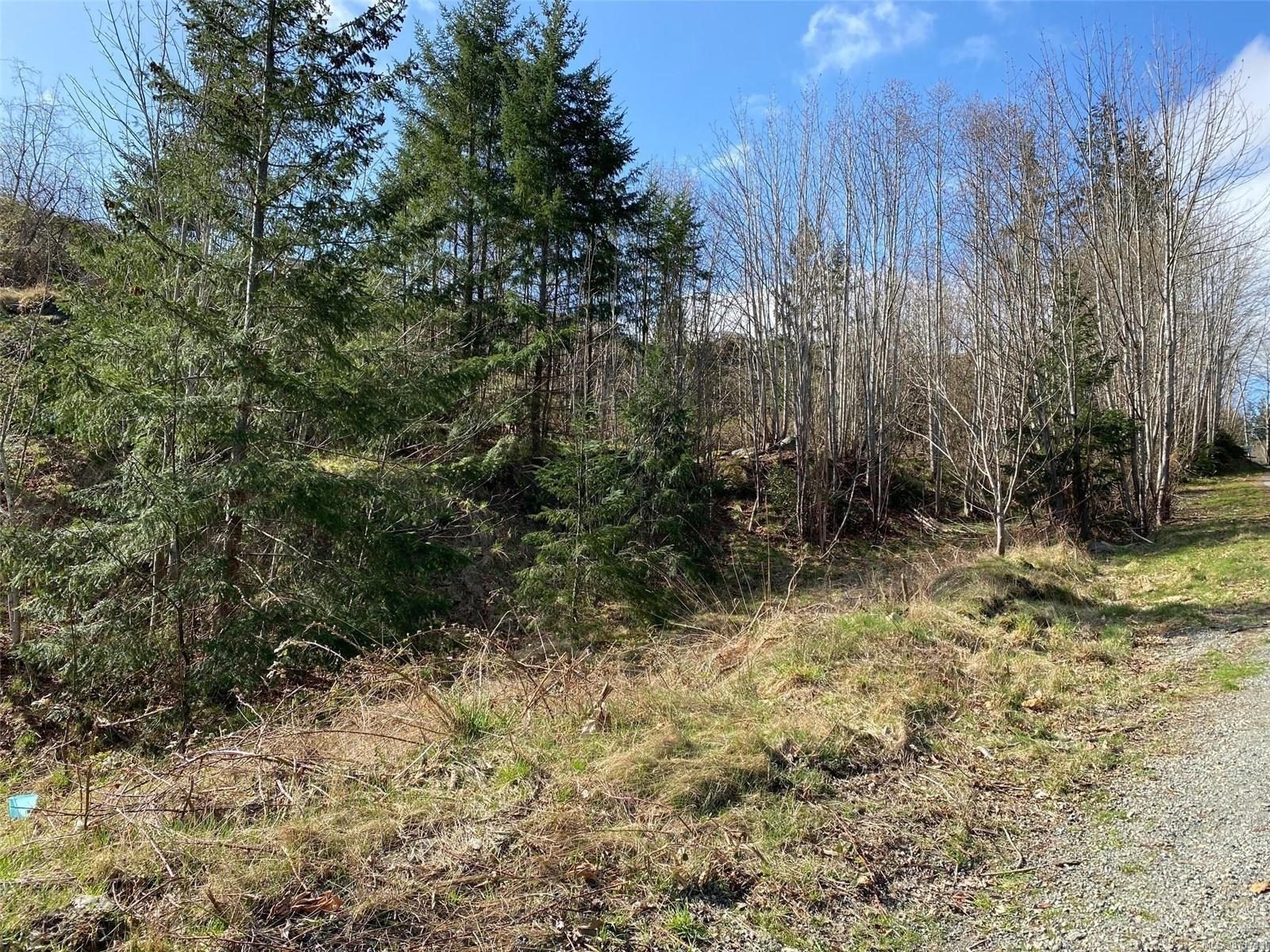 Main Photo: LOT 15 Spruce St in : CR Campbell River Central Land for sale (Campbell River)  : MLS®# 871743