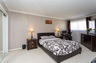 Photo 14: 304 3900 Shelbourne St in VICTORIA: SE Cedar Hill Condo for sale (Saanich East)  : MLS®# 768174