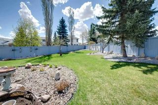 Photo 43: 3616 31A Street in Edmonton: Zone 30 House for sale : MLS®# E4244166
