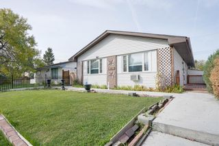 Photo 4: 3307 39 Street SE in Calgary: Dover Detached for sale : MLS®# A1148179