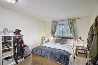 Photo 15: 202 1513 26th Avenue SW 26th Avenue SW in Calgary: South Calgary Apartment for sale : MLS®# A1117931