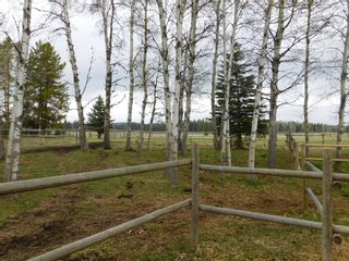 Photo 34: 84078 Highway 591: Rural Clearwater County Detached for sale : MLS®# A1111743