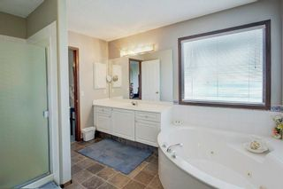 Photo 23: 325 CORAL SPRINGS Place NE in Calgary: Coral Springs Detached for sale : MLS®# A1066541