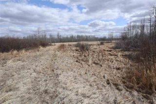Photo 29: Twp 510 RR 33: Rural Leduc County Rural Land/Vacant Lot for sale : MLS®# E4239253