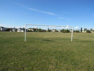 Photo 38: 3240 27 Avenue in Edmonton: Zone 30 House for sale : MLS®# E4261690