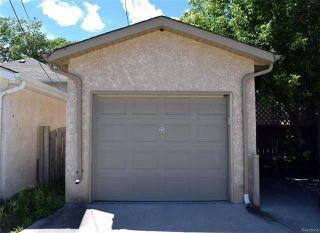 Photo 17: 549 Clifton Street in Winnipeg: Wolseley Residential for sale (5B)  : MLS®# 1818052