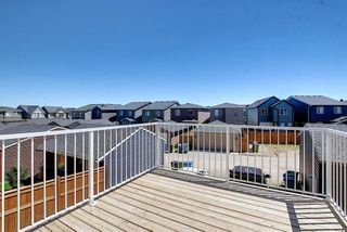 Photo 44: 26 Evanscrest Heights NW in Calgary: Evanston Detached for sale : MLS®# A1127719