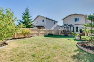 Photo 26: 283 Applestone Park SE in Calgary: Applewood Park Detached for sale : MLS®# A1087868