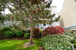 """Photo 2: 110 4753 W RIVER Road in Delta: Ladner Elementary Condo for sale in """"RIVERWEST"""" (Ladner)  : MLS®# R2593411"""