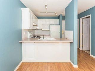 Photo 15: 209 12155 75A Avenue in Surrey: West Newton Condo for sale : MLS®# R2085068