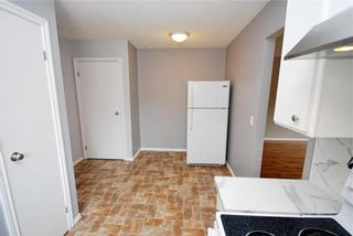 Photo 9: 123 Paddington Road in Winnipeg: River Park South Residential for sale (2F)  : MLS®# 202119787