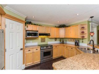 Photo 8: 449 ELGIN Way SE in Calgary: McKenzie Towne Residential Detached Single Family for sale : MLS®# C3653547