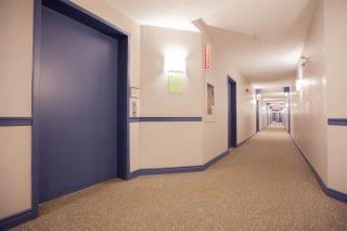 Photo 5: 408 7905 96 Street in Edmonton: Zone 17 Condo for sale : MLS®# E4241661
