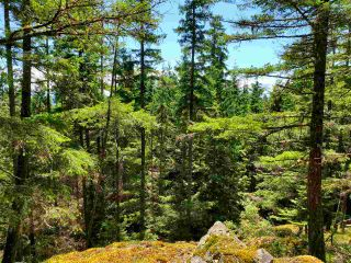 Photo 15: Lot 48 FLINT Road: Keats Island Land for sale (Sunshine Coast)  : MLS®# R2460854