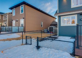 Photo 48: 2 RANCHERS View: Okotoks Detached for sale : MLS®# A1076816