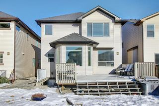Photo 49: 119 PANTON Landing NW in Calgary: Panorama Hills Detached for sale : MLS®# A1062748