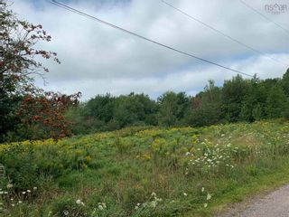 Photo 2: Highway 4 in Linacy: 108-Rural Pictou County Vacant Land for sale (Northern Region)  : MLS®# 202121191