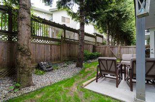 """Photo 26: 3 20589 66 Avenue in Langley: Willoughby Heights Townhouse for sale in """"Bristol Wynde"""" : MLS®# F1414889"""