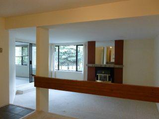 "Photo 17: 210 15275 19 Avenue in Surrey: King George Corridor Condo for sale in ""Village Terrace"" (South Surrey White Rock)  : MLS®# F1314858"