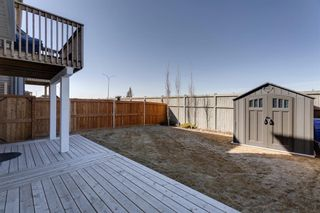 Photo 5: 81 Windford Park SW: Airdrie Detached for sale : MLS®# A1095520
