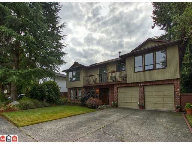 Huge basement entry home on an even bigger 9300 sf lot!