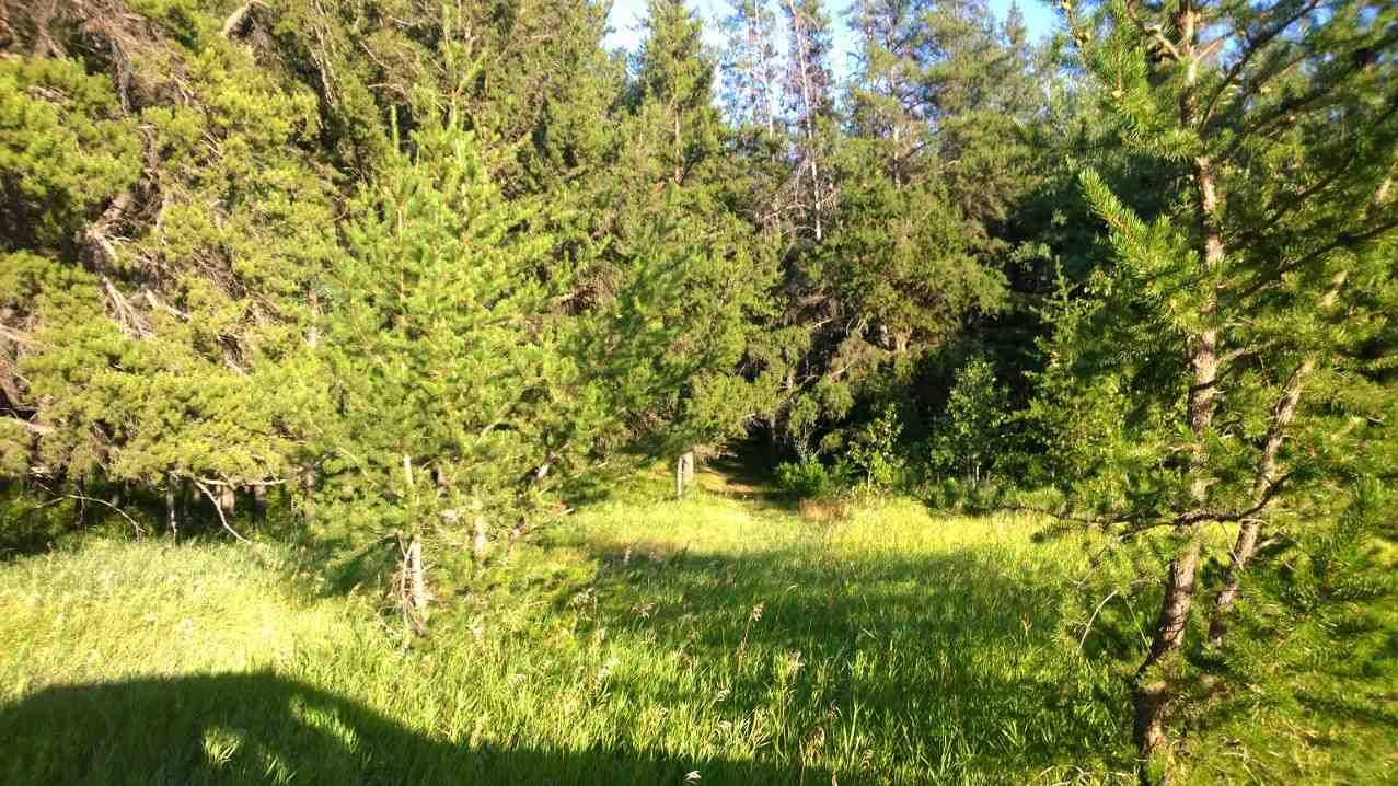 Main Photo: #3-51227 RGE RD 270 Road: Rural Parkland County Rural Land/Vacant Lot for sale : MLS®# E4211009