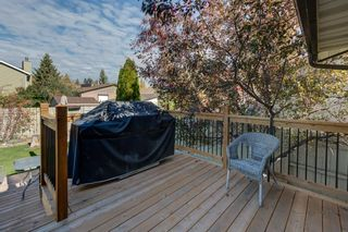Photo 44: 12 Willowbrook Crescent: St. Albert House for sale : MLS®# E4264517