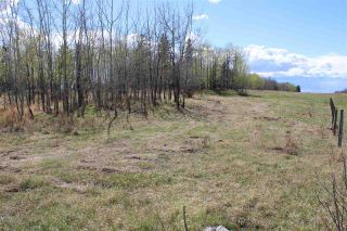 Photo 11: 57032 RR 50: Rural Lac Ste. Anne County Rural Land/Vacant Lot for sale : MLS®# E4244016