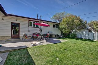 Photo 21: 9816 2 Street SE in Calgary: Acadia Detached for sale : MLS®# A1118342