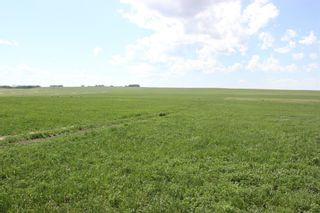 Photo 18: ON Range Road 12 in Rural Rocky View County: Rural Rocky View MD Commercial Land for sale : MLS®# A1116953