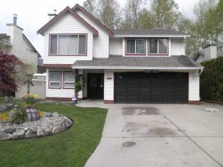 Photo 20: 23843 119A Avenue in Maple Ridge: Cottonwood MR House for sale : MLS®# V1116745