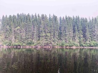 Photo 5: 57 Waterfront Road in Red Lake: Vacant Land for sale : MLS®# TB212255