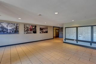 """Photo 2: 433 5660 201A Street in Langley: Langley City Condo for sale in """"Paddington Station"""" : MLS®# R2596042"""