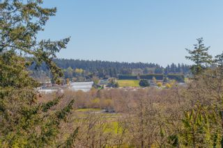 Photo 34: 899 Currandale Crt in : SE Lake Hill House for sale (Saanich East)  : MLS®# 871873