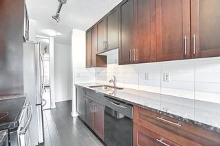 Photo 6: 303 4455A Greenview Drive NE in Calgary: Greenview Apartment for sale : MLS®# A1108022