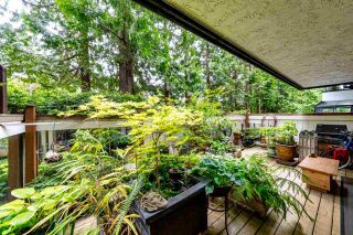 "Photo 7: 205 1319 MARTIN Street: White Rock Condo for sale in ""The Cedars"" (South Surrey White Rock)  : MLS®# R2553279"