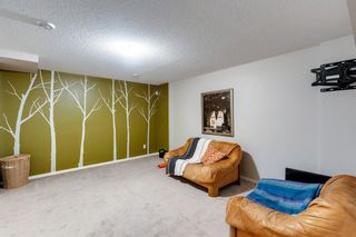Photo 30: 69 Walden Drive SE in Calgary: Walden Semi Detached for sale : MLS®# A1127735
