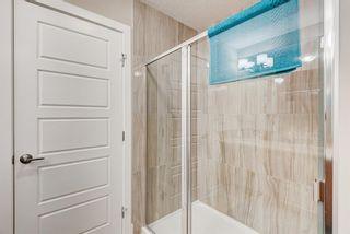 Photo 38: 102 Saddlelake Way NE in Calgary: Saddle Ridge Detached for sale : MLS®# A1092455