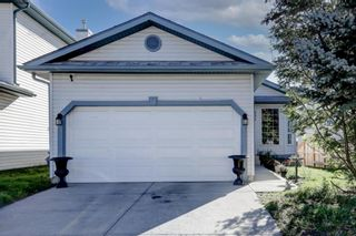 Main Photo: 231 Applestone Park SE in Calgary: Applewood Park Detached for sale : MLS®# A1144028