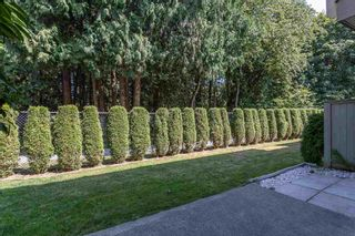 """Photo 30: 26 7640 BLOTT Street in Mission: Mission BC Townhouse for sale in """"Amberlea"""" : MLS®# R2606249"""