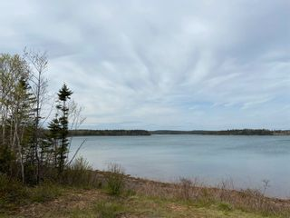 Photo 6: Lot Highway 320 in D'Escousse: 305-Richmond County / St. Peters & Area Vacant Land for sale (Highland Region)  : MLS®# 202112348
