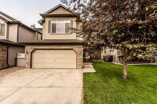 Photo 41: 78 CRYSTAL SHORES Place: Okotoks Detached for sale : MLS®# A1009976