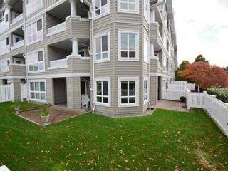 Photo 18: 102 5500 LYNAS LANE in Richmond: Riverdale RI Condo for sale ()  : MLS®# V1101938
