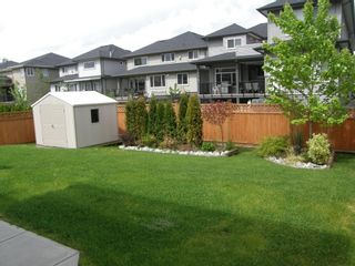 Photo 5: 12473 201ST STREET in MCIVOR MEADOWS: Home for sale