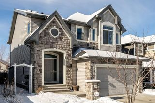 Photo 45: 39 Cimarron Springs Way: Okotoks Detached for sale : MLS®# A1069852