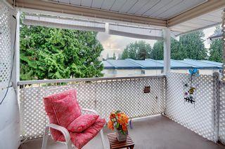 Photo 3: 71 20554 118TH AVENUE in Maple Ridge: Southwest Maple Ridge Townhouse for sale : MLS®# R2608866