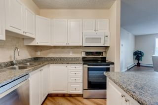 Photo 5: 408 3000 Somervale Court SW in Calgary: Somerset Apartment for sale : MLS®# A1146188