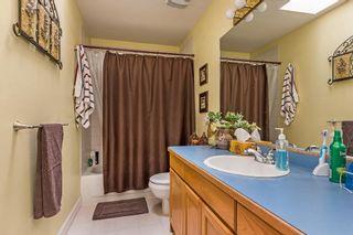 Photo 16: 23614 116 Avenue in Maple Ridge: Cottonwood MR House for sale : MLS®# R2177770