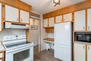 Photo 8: 131 Hillview Avenue in East St Paul: Birds Hill Town Residential for sale (3P)  : MLS®# 202110748