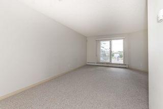 Photo 6: 334 4210 139 Avenue in Edmonton: Zone 35 Condo for sale : MLS®# E4261806